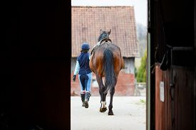 pic of horse-riders  - A rider and the horse going out from the stable - JPG