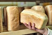 Постер, плакат: Bread in the man hands Bakery Stocks bread Manufacture of rusks