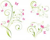 Florals Designs And Butterflies