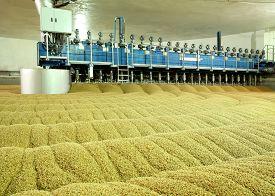 stock photo of malt  - Industrial production of malt - JPG