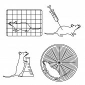 Mouse In Lab Experiments Set poster
