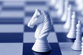 pic of chess pieces  - White knight on a chess board - JPG