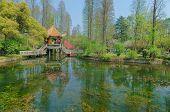 Wuhan botanical garden scenery
