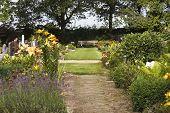 Flowering Graveyard