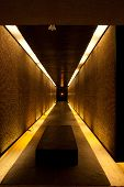 Tunnel of Light and Memory