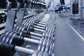 A Range Of Dumbbells On The Stand In The Gym In Blue. Metal Dumbbells. poster