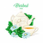 Herbal Tea Hand Drawn Color Illustration. Ceramic Teapot, Porcelain Cup, Camomile Flower, Mint, Teat poster