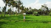 Young Woman Outdoors With Whiteboard And Handwriting Word Tropical On It. Drone Flying Footage. Gree poster