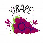 Vector Hand Draw Red Grape Illustration. Blue Grapes With Juice Splash Isolated On White Background. poster