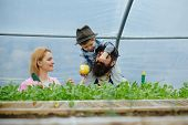 Plant Growing. Happy Family Growing Plant In Greenhouse. Plant Growing In Modern Greenhouse. Chils W poster