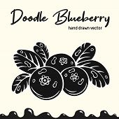 Blueberry Vector Illustration, Berries Images. Doodle Blueberry Silhouette Vector Illustration. Blue poster