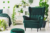 Emerald Green Comfortable Armchair And Pouf In Contemporary Bedroom Interior With Urban Jungle poster