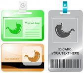 Stomach. Vector id cards.
