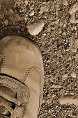 Hiking Boot Off-road Shoe On Hard Arid Dried Soil In Sepia, Vertical Close Up, Detailed Macro Of Bar