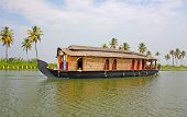 Palms and Kerala backwaters