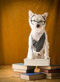 Book Nerd Dog