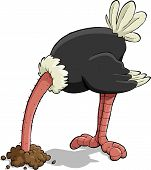 stock photo of dread head  - Ostrich hiding its head in the sand vector illustration - JPG