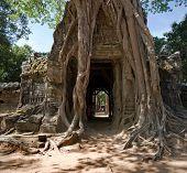 Ta Som Tempel, Angkor, Kambodscha