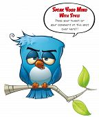 Blue Bird Sober
