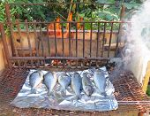 Barbecuing Fish