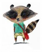 pic of rabies  - Illustration of a happy raccoon with a red bag - JPG