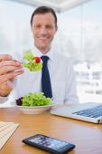 Businessman eating a salad during the lunch time