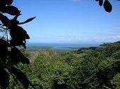 Cape Trib Daintree Lookout