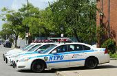 NYPD cars in Brooklyn, NY