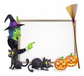 stock photo of witch  - Halloween background sign frame with witch Halloween pumpkin witch - JPG