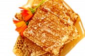 Honeycomb With Honey And Flowers