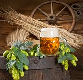 image of bine  - still life with hop cones barely and gless of beer - JPG