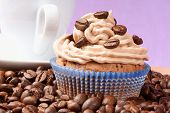Coffee Cupcake And Espresso