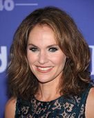 LOS ANGELES - JUN 12:  Amy Brenneman arrives to the Women In Film's 2013 Crystal + Lucy Awards  on J