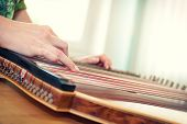 Close Up Of Young Girl's Hand Playing On Zither