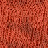 Red Reptile Texture - Seamless
