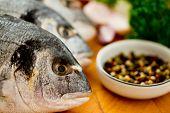 Mariscos, pescados - mariscos frescos dorada en cocina