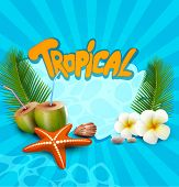 tropical banner with seashells, starfish
