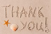 Word Of Thank You To The Wet Sand Or Seashells