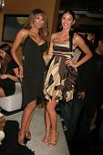 Traci Bingham and CC Fontana  at the Birthday and Viewing Party for Fashion Designer Tal Sheyn, sponsored by Shoes for the Stars and Shoe String Ent., 24 Carat, West Hollywood, CA. 10-18-08