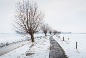Long Ditch With Thin Ice In A Snowy Landscape