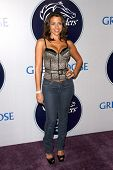 Vida Guerra  at the 2008 Breeders' Cup Winners Circle Gala. Hollywood Palladium, Hollywood, CA. 10-23-08