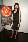 Saffron Burrows  at the 60th Anniversary of the Universal Declaration of Human Rights gala hosted by Amnesty International USA. Zune, Los Angeles, CA. 11-20-08