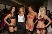 Robin Antin   at the Launch of the Pusscat Dolls Lingerie '...Shhh'. Bebe, Beverly Hills, CA. 12-03-08