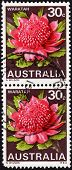 Postage Stamps Showing The Australian Waratah Plant