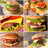 foto of beef-burger  - Group of the beef and fish burgers - JPG