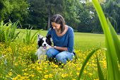Loyal border collie sitting in buttercups with his boss
