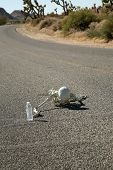 A lost hiker dies of thirst on a deserted desert road inches away from a bottle of water.  Dark Humo