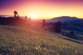 Beautiful sunny day is in mountain landscape. Carpathian, Ukraine, Europe. Beauty world. Retro filte