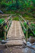 The bamboo bridge in Indonesian rain forrest