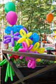 Balloons Shaped In Form Flower